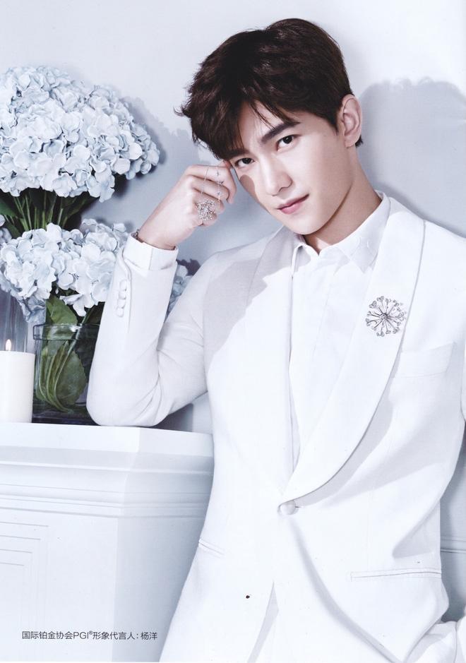 Triệu Lệ Dĩnh vượt mặt Phạm Băng Băng, trở thành ngôi sao quảng cáo hot nhất 2017-4