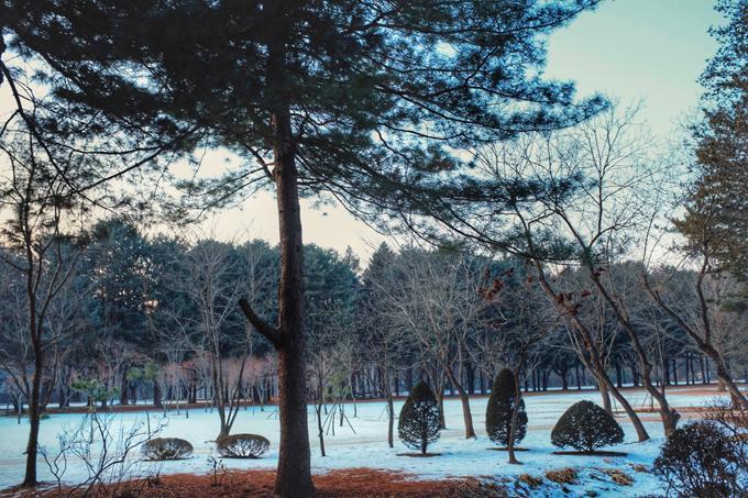 Hàn Quốc mùa đông đẹp quyến rũ chẳng kém mùa thu lá vàng-1