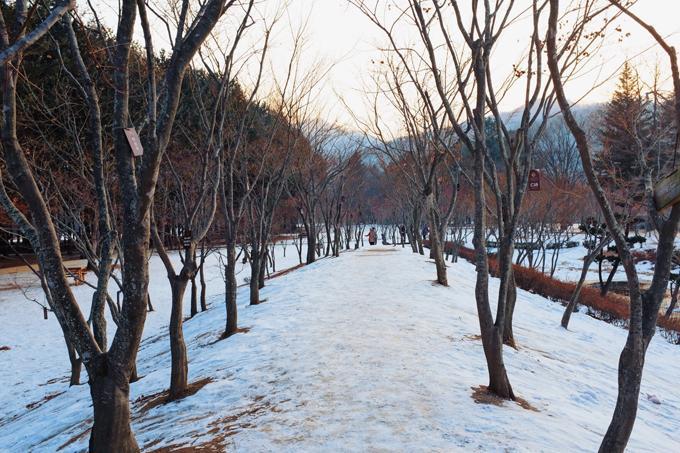 Hàn Quốc mùa đông đẹp quyến rũ chẳng kém mùa thu lá vàng-4