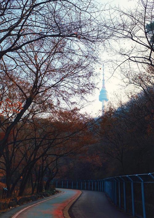 Hàn Quốc mùa đông đẹp quyến rũ chẳng kém mùa thu lá vàng-5