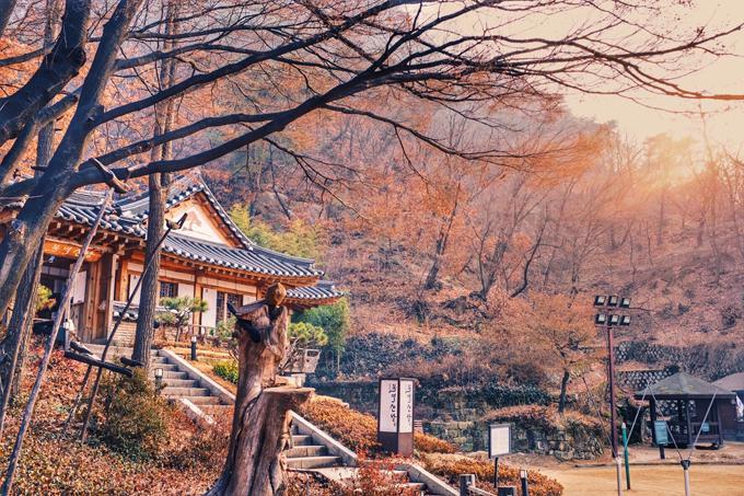 Hàn Quốc mùa đông đẹp quyến rũ chẳng kém mùa thu lá vàng-10