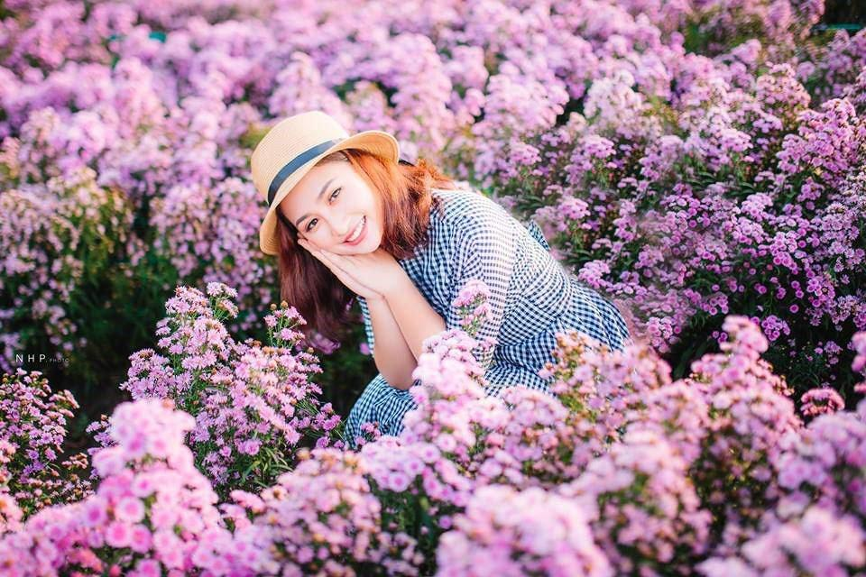 Vườn hoa thạch thảo tím lịm, đốn tim các thánh sống ảo-1