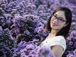 Vườn hoa thạch thảo tím lịm, đốn tim các 'thánh sống ảo'