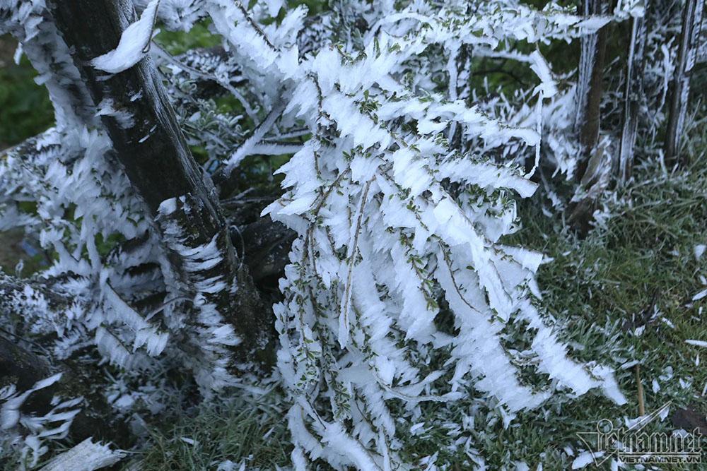 Băng tuyết phủ trắng đỉnh đèo Ô Quý Hồ, mặt đường trơn trượt-2