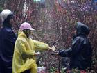 Cận Tết Nguyên đán 2018 miền Bắc mưa rét