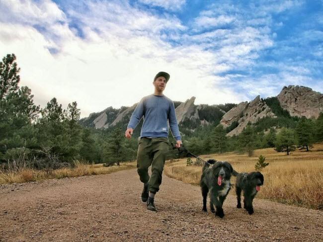 Chàng trai nghỉ việc để đưa cún cưng du ngoạn khắp nước Mỹ-1