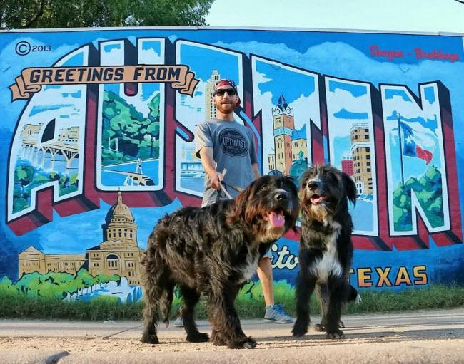 Chàng trai nghỉ việc để đưa cún cưng du ngoạn khắp nước Mỹ-5