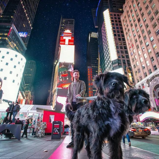 Chàng trai nghỉ việc để đưa cún cưng du ngoạn khắp nước Mỹ-8