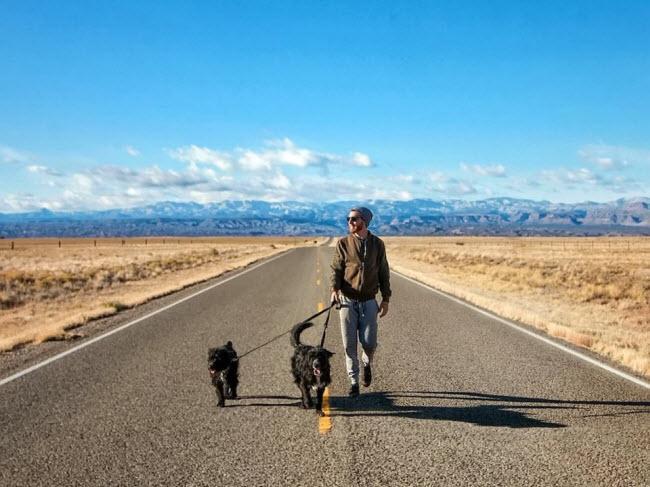 Chàng trai nghỉ việc để đưa cún cưng du ngoạn khắp nước Mỹ-10