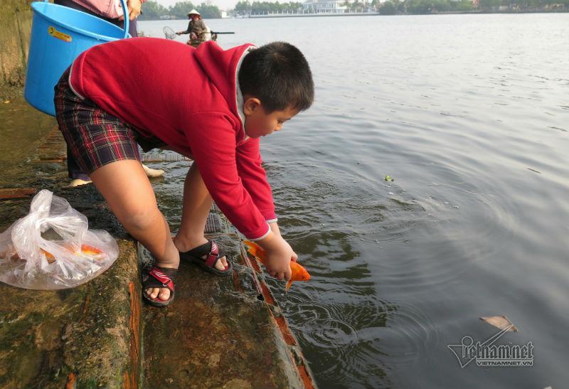 Cá phóng sinh ngày ông Táo vừa được thả đã bị chích điện-5