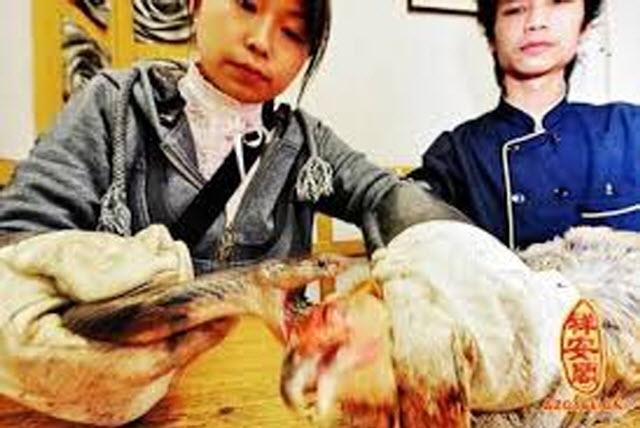 Khóc thét với những món ăn kinh dị nhất Trung Quốc, người phàm ăn cũng chẳng dám nuốt-1