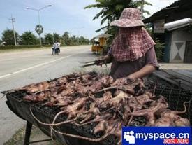 Khóc thét với những món ăn kinh dị nhất Trung Quốc, người phàm ăn cũng chẳng dám nuốt