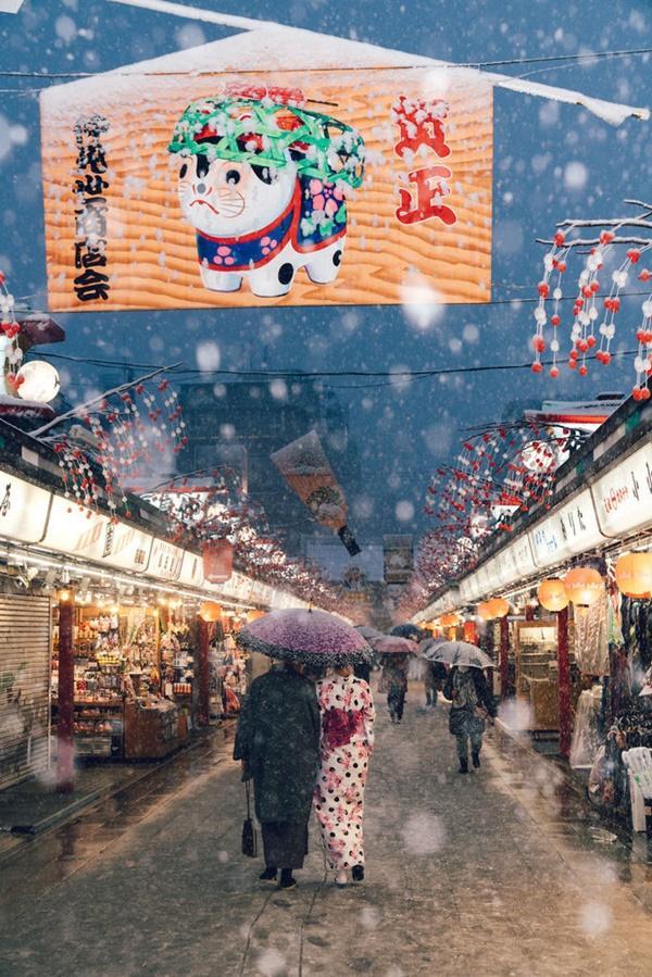Tokyo đẹp nghẹt thở trong màn tuyết giá buốt-2