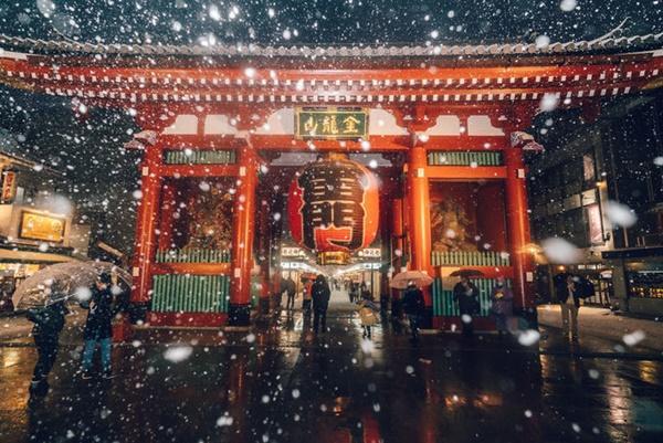 Tokyo đẹp nghẹt thở trong màn tuyết giá buốt-3