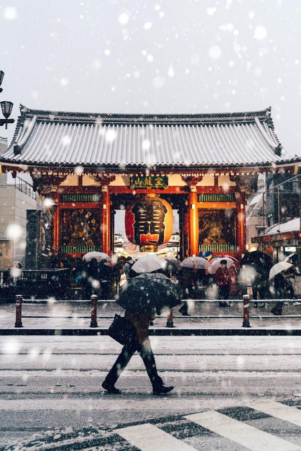 Tokyo đẹp nghẹt thở trong màn tuyết giá buốt-4