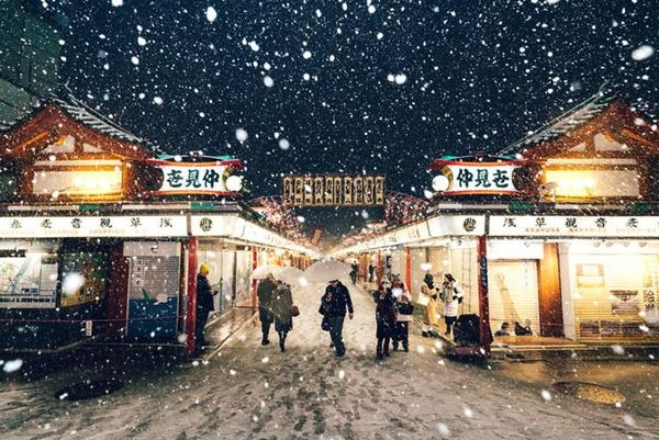 Tokyo đẹp nghẹt thở trong màn tuyết giá buốt-5