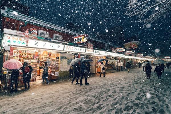 Tokyo đẹp nghẹt thở trong màn tuyết giá buốt-6