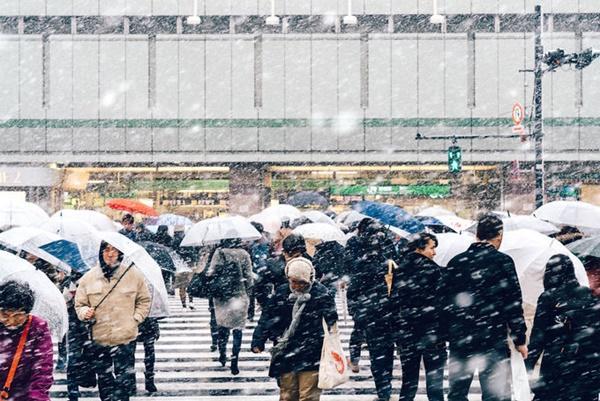 Tokyo đẹp nghẹt thở trong màn tuyết giá buốt-11