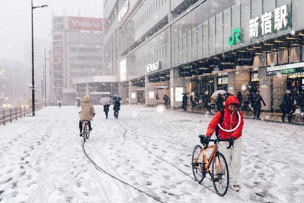 Tokyo đẹp nghẹt thở trong màn tuyết giá buốt-12