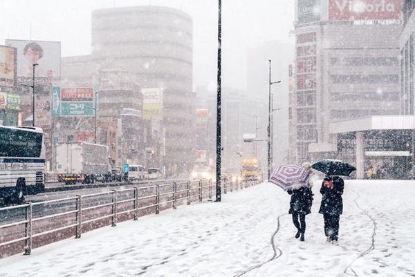Tokyo đẹp nghẹt thở trong màn tuyết giá buốt-13
