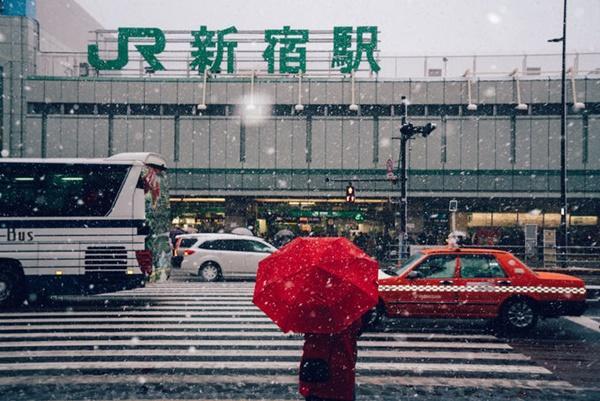 Tokyo đẹp nghẹt thở trong màn tuyết giá buốt-14