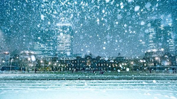 Tokyo đẹp nghẹt thở trong màn tuyết giá buốt-7