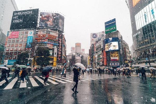 Tokyo đẹp nghẹt thở trong màn tuyết giá buốt-10