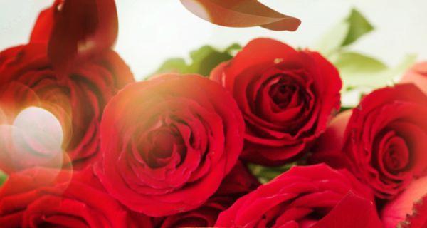7 lợi ích sức khỏe và sắc đẹp từ hoa hồng-2