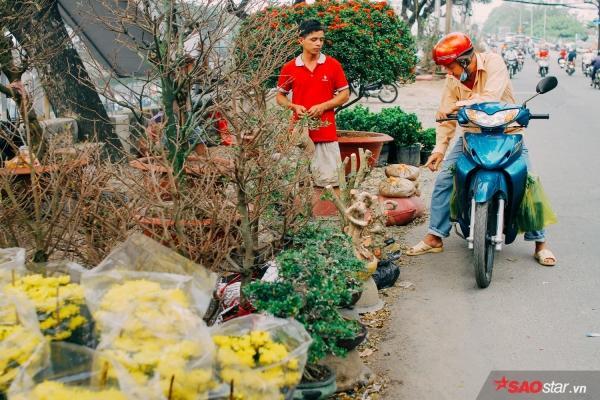 Chiều cuối năm, lang thang ở những chợ hoa truyền thống Sài Gòn đã thấy Tết về đến nơi rồi!-2