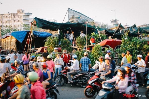 Chiều cuối năm, lang thang ở những chợ hoa truyền thống Sài Gòn đã thấy Tết về đến nơi rồi!-3