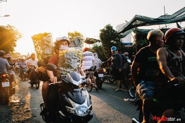 Chiều cuối năm, lang thang ở những chợ hoa truyền thống Sài Gòn đã thấy Tết về đến nơi rồi!-5