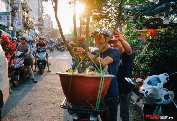 Chiều cuối năm, lang thang ở những chợ hoa truyền thống Sài Gòn đã thấy Tết về đến nơi rồi!-6