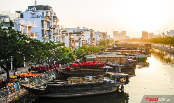 Chiều cuối năm, lang thang ở những chợ hoa truyền thống Sài Gòn đã thấy Tết về đến nơi rồi!-8