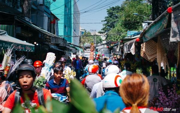 Chiều cuối năm, lang thang ở những chợ hoa truyền thống Sài Gòn đã thấy Tết về đến nơi rồi!-9