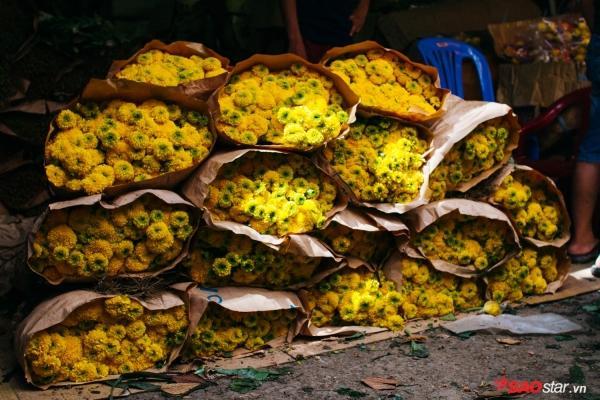 Chiều cuối năm, lang thang ở những chợ hoa truyền thống Sài Gòn đã thấy Tết về đến nơi rồi!-12