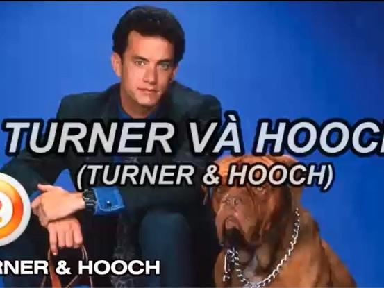 Clip: 10 bộ phim hay nhất về những chú chó nhất định phải xem