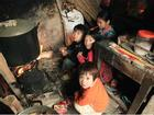 Người mẹ có 14 con ở Hà Nội: Cười, khóc sau 30 mùa xuân chưa bao giờ vui!