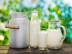 Uống sữa thế nào để không biến thành