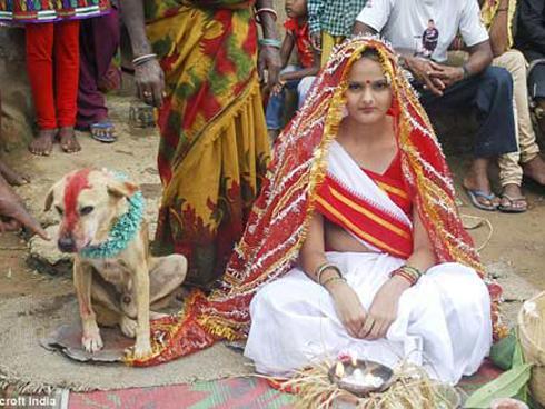Chuyện lạ: Cô gái 18 tuổi người Ấn Độ kết hôn với một chú chó