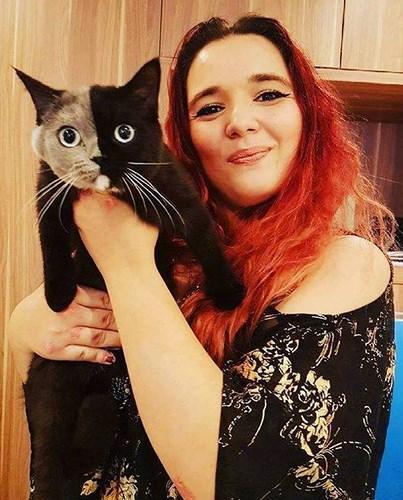 Chùm ảnh về chú mèo hai mặt đáng yêu nhất thế giới-10