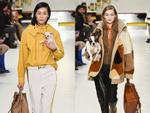 Tuần lễ thời trang Milan: Người mẫu vừa catwalk vừa bế trên tay 1 chú 'tiểu Tuất' cực đáng yêu