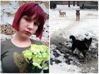 Thảm kịch trên đường đi học về, bé gái 12 tuổi bị bầy chó hoang tấn công dã man