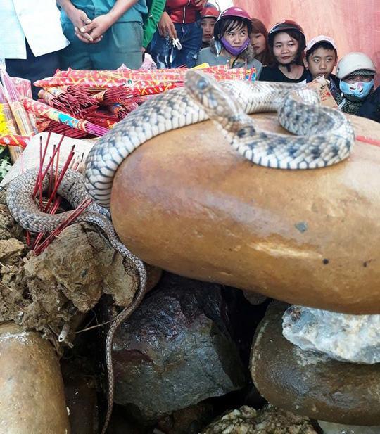 Dân ùn ùn xem mẹ con rắn thần xuất hiện trên mộ vô danh-1
