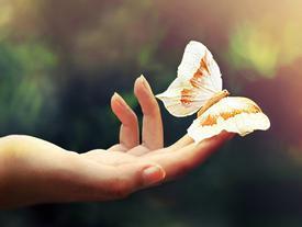 Đoán tính cách, tình duyên thông qua nốt ruồi ở ngón tay của bạn