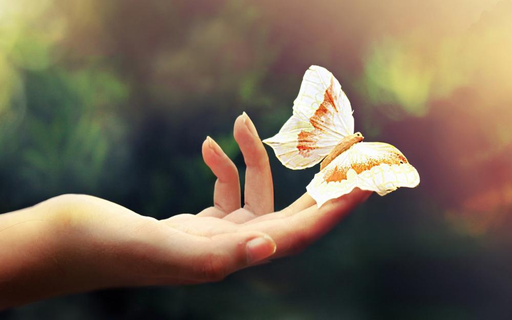 Đoán tính cách, tình duyên thông qua nốt ruồi ở ngón tay của bạn-2