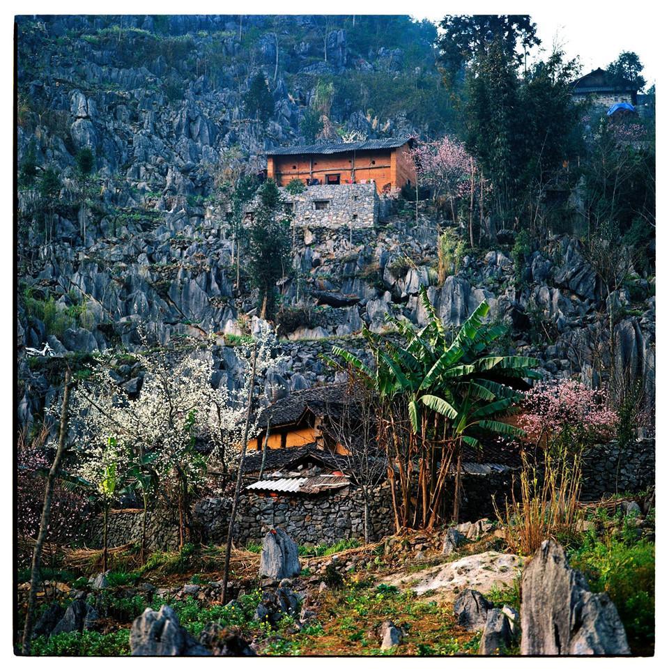 Bộ ảnh phim tuyệt đẹp về cao nguyên đá Hà Giang mùa xuân-1