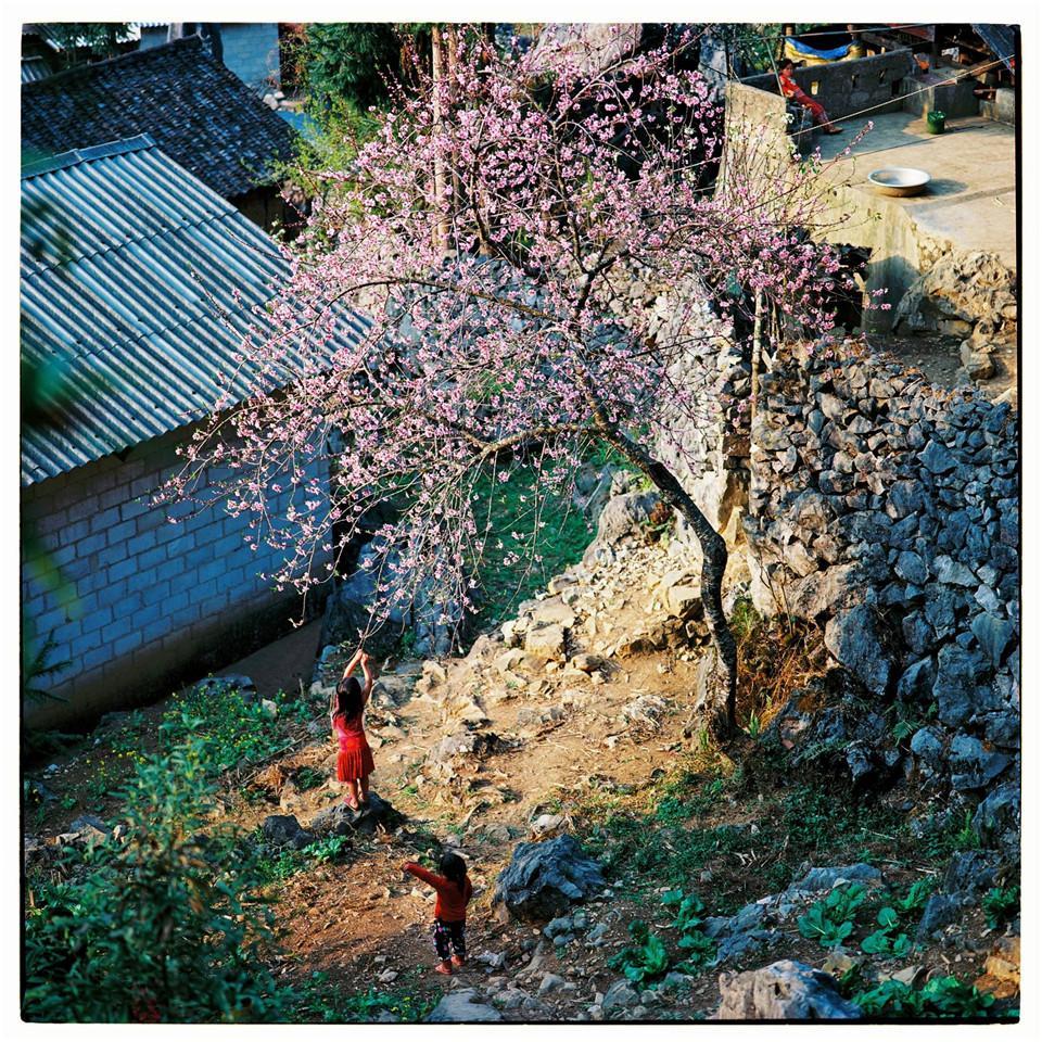 Bộ ảnh phim tuyệt đẹp về cao nguyên đá Hà Giang mùa xuân-2