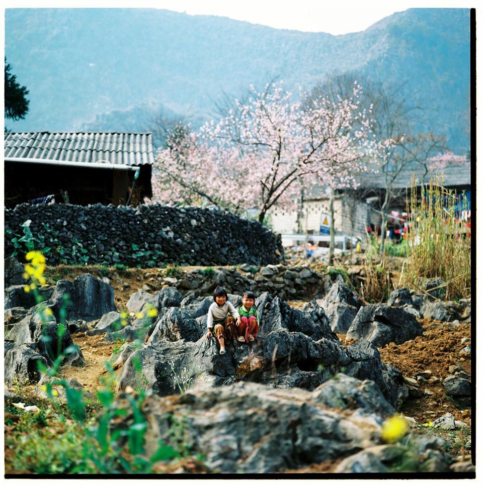 Bộ ảnh phim tuyệt đẹp về cao nguyên đá Hà Giang mùa xuân-7