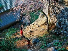 Bộ ảnh phim tuyệt đẹp về cao nguyên đá Hà Giang mùa xuân