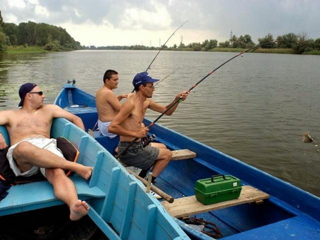 Làm ăn và câu cá-1